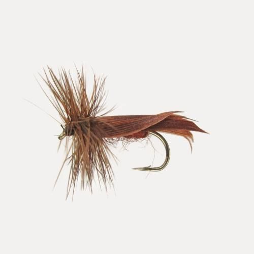 Jenzi Trockenfliege Brown Sedge